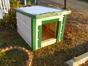 dog house 300x225 Shed Pictures